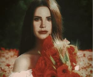 lana del rey, red, and music image