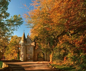 autumn, autumnal, and castle image
