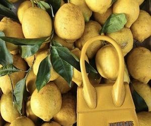 lemon, yellow, and jacquemus image