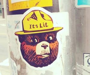 bear, lit, and smokey image