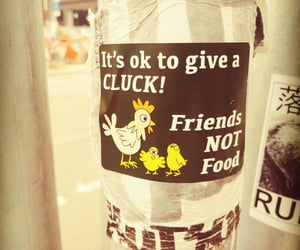 Chicken, sticker, and not food image