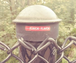 fence, sticker, and flavor image