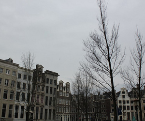 amsterdam, Houses, and old image