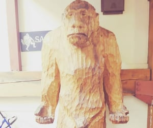 brown, carving, and sasquatch image