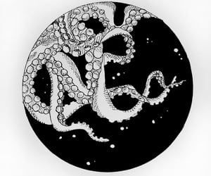 black n white, drawing, and octopus image