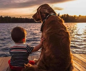 baby, friendly, and dog image