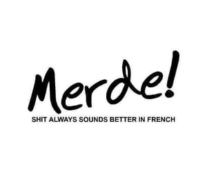 shit, french, and quotes image