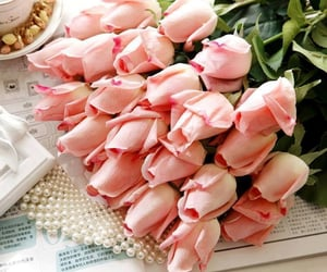 flores and roses image