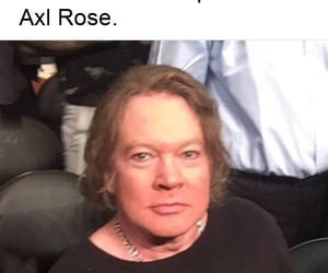 axl rose, rose, and memes rock image