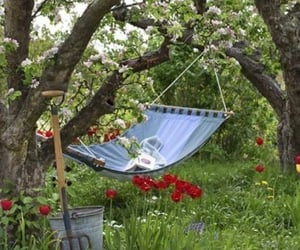 garden, flowers, and relax image