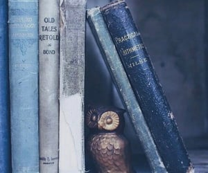 book, blue, and owl image