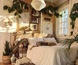 decor, plants, and bedroom image