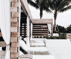 aesthetic, exterior, and palm trees image