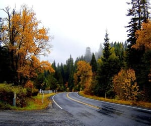 autumn, <-- it's fall themed, and instagram: @sarahfennema image