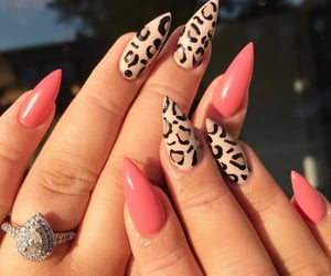 cheetah, leopard, and manicure image