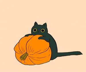 autumn, black, and cozy image