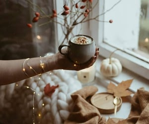 autumn, light, and coffee image