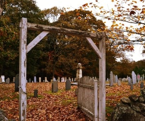 autumn, cemetery, and fall image