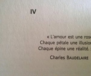 amour, citation, and Charles Baudelaire image