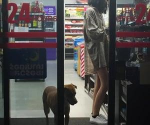 girl, tumblr, and dog image