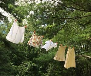 laundry, nature, and cottagecore image