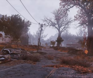 autumn, fallout, and fallen leaves image