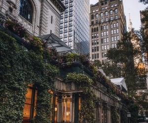 buildings, new york, and nyc image