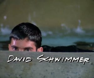 David Schwimmer, serie, and favourite actor image