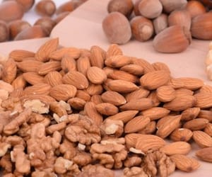 benefits of nuts, buy nuts in bulk online, and buy nuts wholesale bulk image