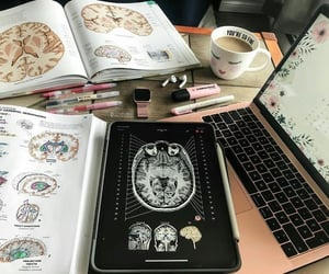 medical, notes, and study image