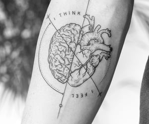 brain, think, and feel image