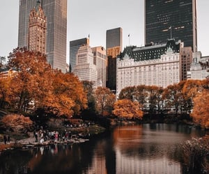 new york, autumn, and city image