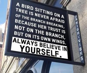 always, love, and birds image