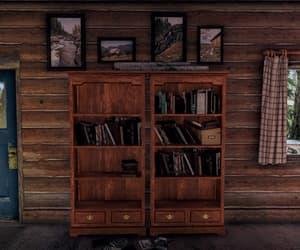 bookshelf, hope county, and brown image