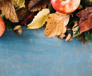 apple, decoration, and autumn image