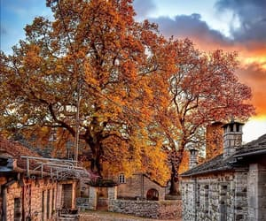 autumn, tranquility, and hot drink image
