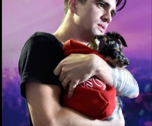 brendon urie, dog, and puppy image
