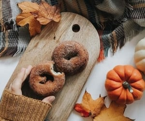 autumn, desserts, and donuts image