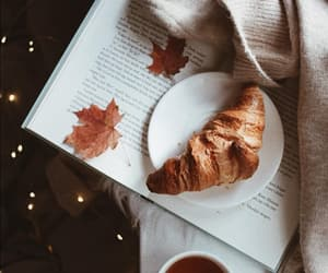 autumn, book, and cafe image