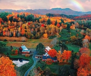 autumn, vermont, and fall image