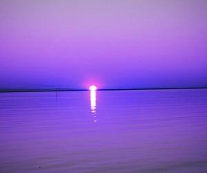 purple, moon, and tumblr image