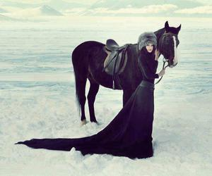 horse, black, and snow image