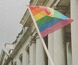pride, 🏳, and lgbt image