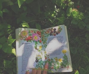 book, floral, and green image