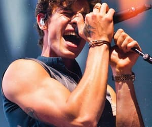 shawn mendes, boys, and shawn image
