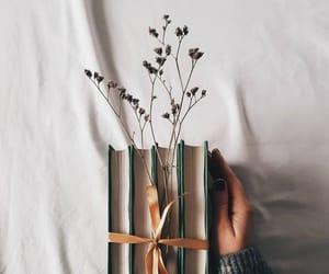 book, photography, and flowers image