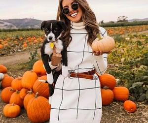 autumn, dog, and dress image