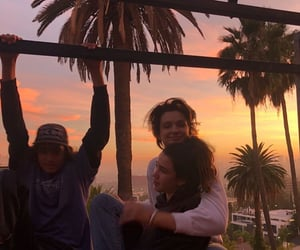 palm trees, sunset, and friends image