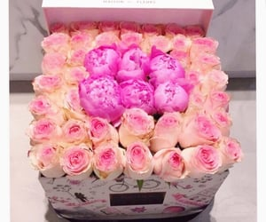 flowers, peach, and roses image