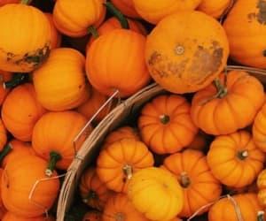 autumn, cozy, and seasons image